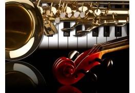 Как да се грижим за музикалните си инструменти
