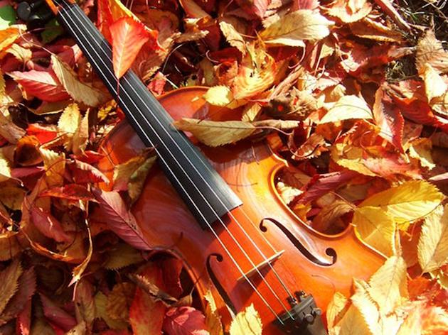 6 начина да предпазим музикалните инструменти от студа